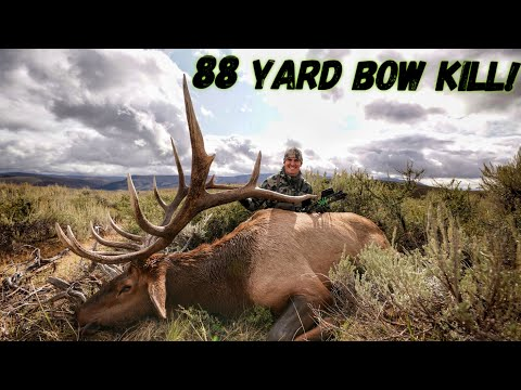 Josh's Bull Of Lifetime! A 4 Year Quest For This Giant Bull | Bowmar Bowhunting |