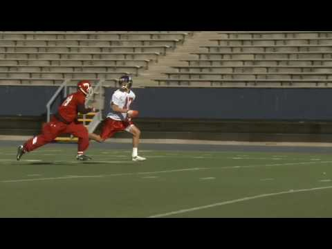 Johnny Knox - Chicago Bears - Draft Video Profile
