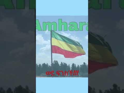 Ethiopian Music: ዳኘ ዋለ | ወይ ፍንክች ❗️አማራው ተራራው ለጸሎት እና ተኩስ ነው'ሚበረከከው።  ክተት ኢትዮጵያ💚💛❤️