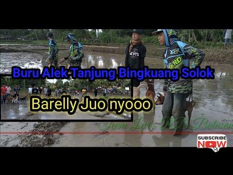 MARENTEN Buru Alek Tanjung Bingkuang Solok SEMUA PORBI