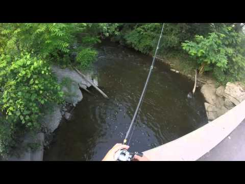 Small river creek fishing for smallmouth bass youtube for Small creek fishing