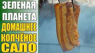 Домашнее сало горячего копчения / Рецепт домашнего копченого сала