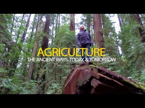 Agriculture:  The Ancient Ways, Today, & Tomorrow