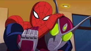Великий Человек-паук - Нападение Жука - Сезон 1, Серия 24   Marvel