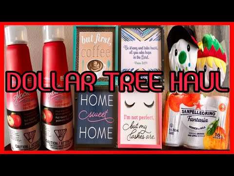 AMAZING DOLLAR TREE HAUL | WITH ALL NEW FINDS | NOVEMBER 17 2019