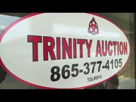 Trinity Auction in Halls Crossroads - Knoxville, TN