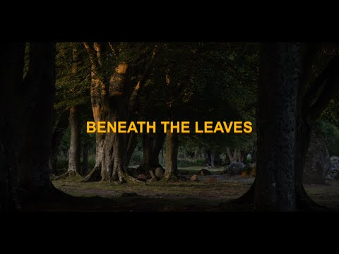 NOHUMANEYE - Beneath The Leaves (Official Music Video 2020) @ Clava Cairns