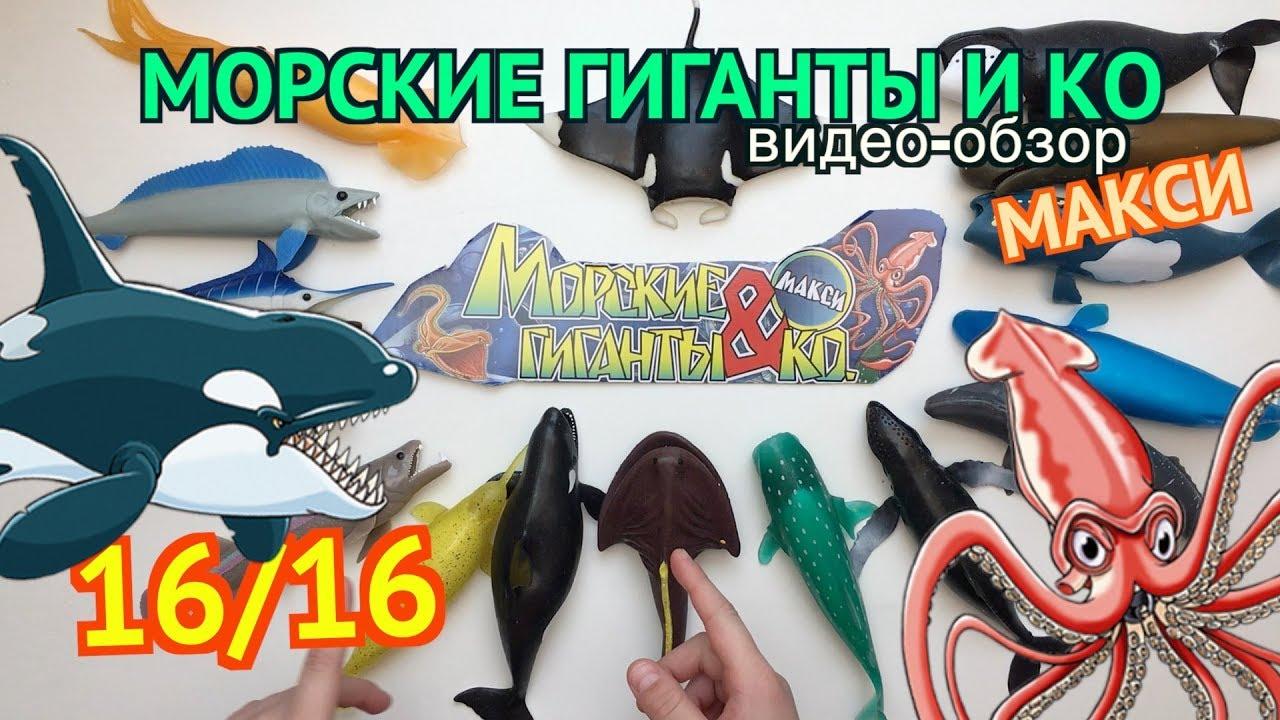 Корреспонденты портала ко44. Ru вспомнили, какие новости были самыми яркими, интересными и обсуждаемы. Подробнее ». Просмотров:4584 нет.