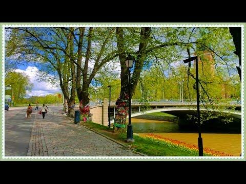 Knit 'n' Tag Turku Finland 2015 Environmental Art Event
