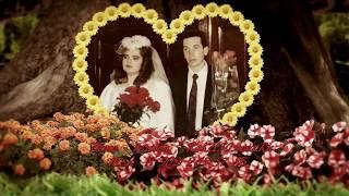Поздравления серебряная свадьба 25 лет