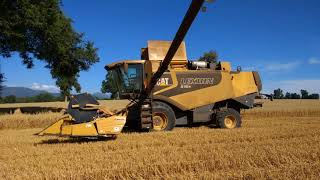 Wheat harvest 2018 Chile LEXION 570r NH TF 78/46/76