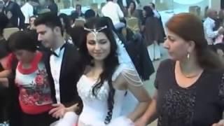 Cavanshir Shero, dewata Kurda Azerbaycane