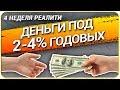 Реалити-Шоу (4 неделя) Как получить КРЕДИТ ДЁШЕВО! Обеспечение контракта 44 ФЗ. Кредит на бизнес!