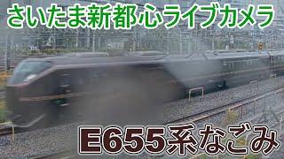 【さいたま新都心ライブカメラ】E655系なごみ団体臨時列車