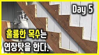 5일차, DIY 계단 발판 목재 구입 & 설치…