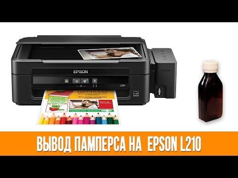 Как сделать сброс уровня чернил epson l210 фото 1000