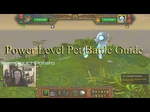 Wow Battle Pet Level Guide From 1 To 22 In 4 Battles Youtube
