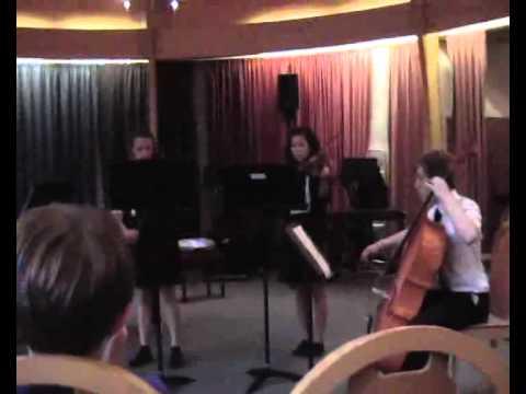 Brandon Choi year9 concert Quartet