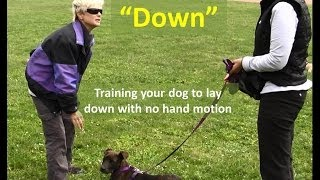 How To Train A Dog To Lay Down With No Hand Motion -  The Pooch Coach