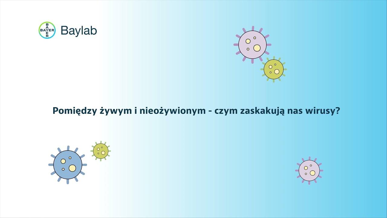 baylab@home nauka jest fajna: wirusy shortcut