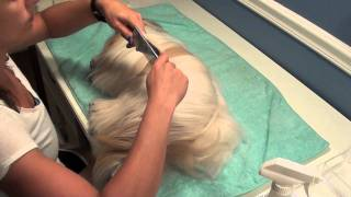 Grooming Series: Basic Daily Routine
