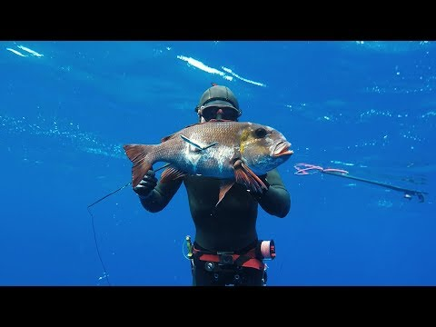 Spearfishing The Kingdom of Tonga - Part 2