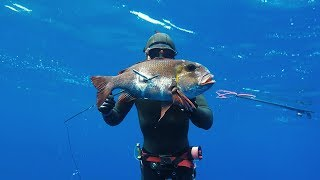 Spearfishing The Kingdom of Tonga - Reef fish!