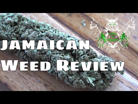 Weed Review - Jamaica | What is Jamaican Marijuana/Weed Like? 4k Video