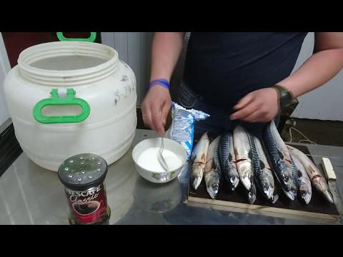 Нежирная рыба для диеты: список и как приготовить