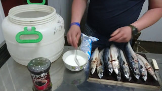 Копчение скумбрии и сельди в домашних условиях