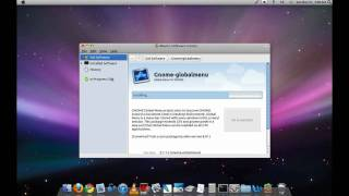 How to make Ubuntu 10.04 or 10.10 look like Mac OS X, Macbuntu, PART 2
