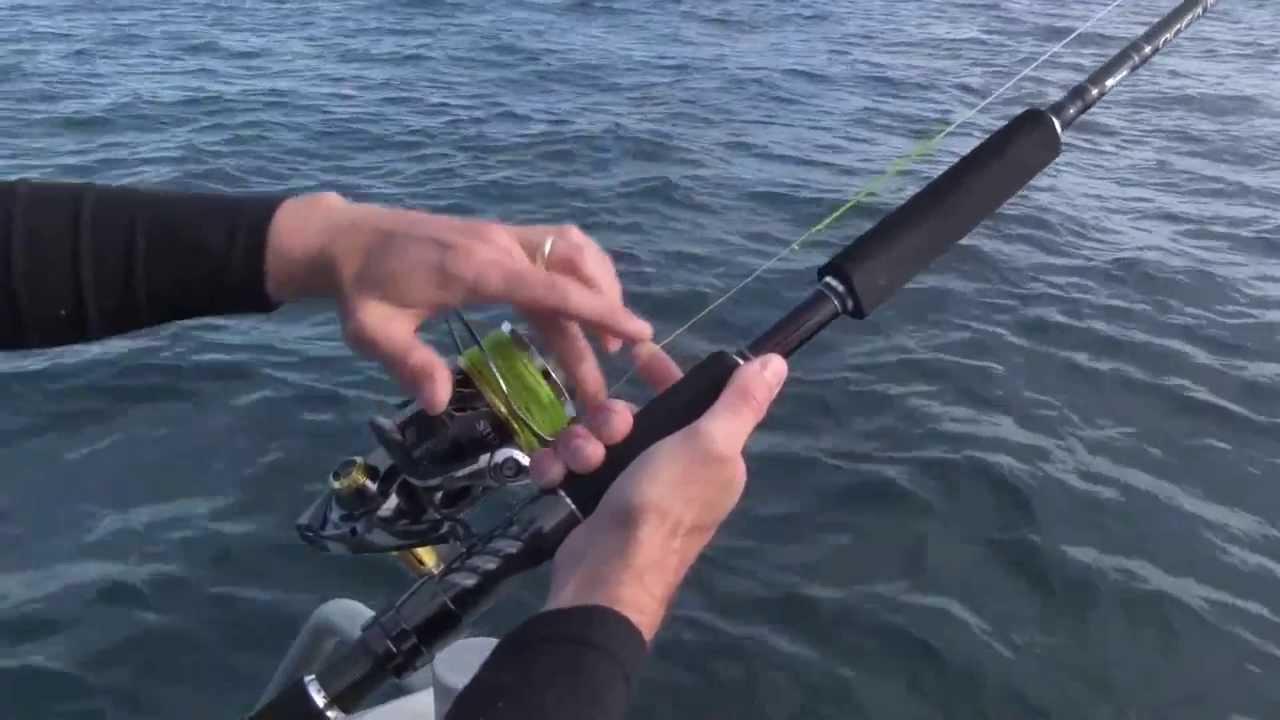 SHIMANO FISHING NZ - TOP WATER KINGFISH