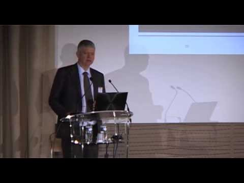The quest of one-piece flow in IT by Pierre Masai, Toyota Motor Europe