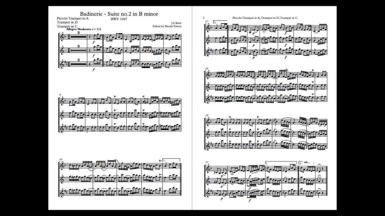 Bach J.S BWV1067: Music Minus... 2 for Flute and Orchestra B Minor Suite No