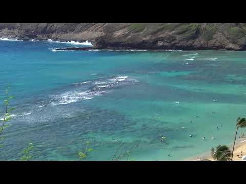 夏威夷專門潛水看魚的海灣HANAUMA BAY Hawaii  USA