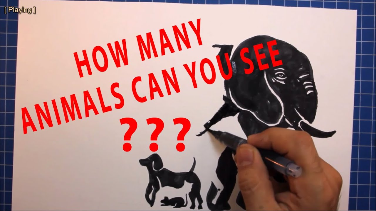 HOW MANY ANIMALS CAN YOU SEE How to Draw a Animals