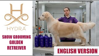 Show Grooming for Golden Retriever with #Hydra