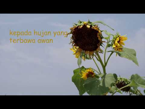 olski---rindu-(unofficial-lyric-video)