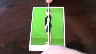 Using a plumb line for postural analysis