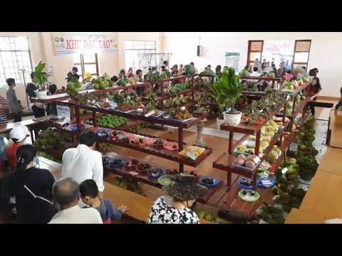 Trực Tiếp Lễ Hội Trái Cây Ngon, An Toàn Tỉnh Bến Tre 2019
