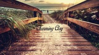 Allies For Everyone - Unrest (Oliver Schories Remix) | Charming Clay