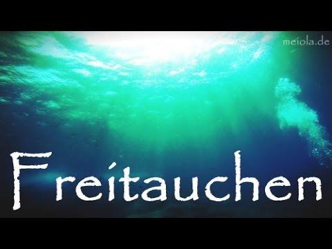 Mein Weg Zum Freitauchen/Freediving (Basic Level SSI, Pooltag, Statisch Und Strecke)