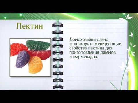 Основные составляющие продуктов питания