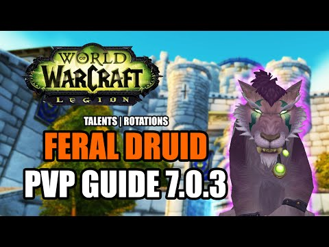 WoW Legion 7.0.3: Feral Druid PvP Guide - Talents, Rotations, How to Do Damage [World of Warcraft]