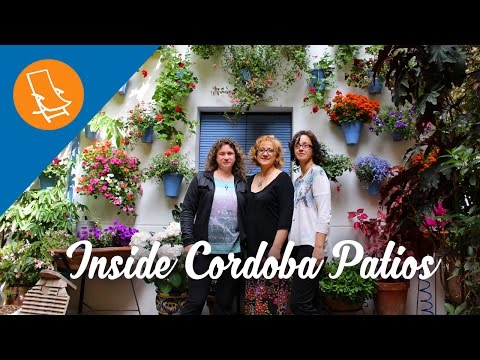 Life in the patios of Cordoba