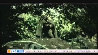 Berlin- Hitlers Letzter Kampf [HD]