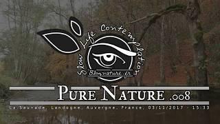 Slow Life Contemplation - Pure Nature n°008 - Saunade