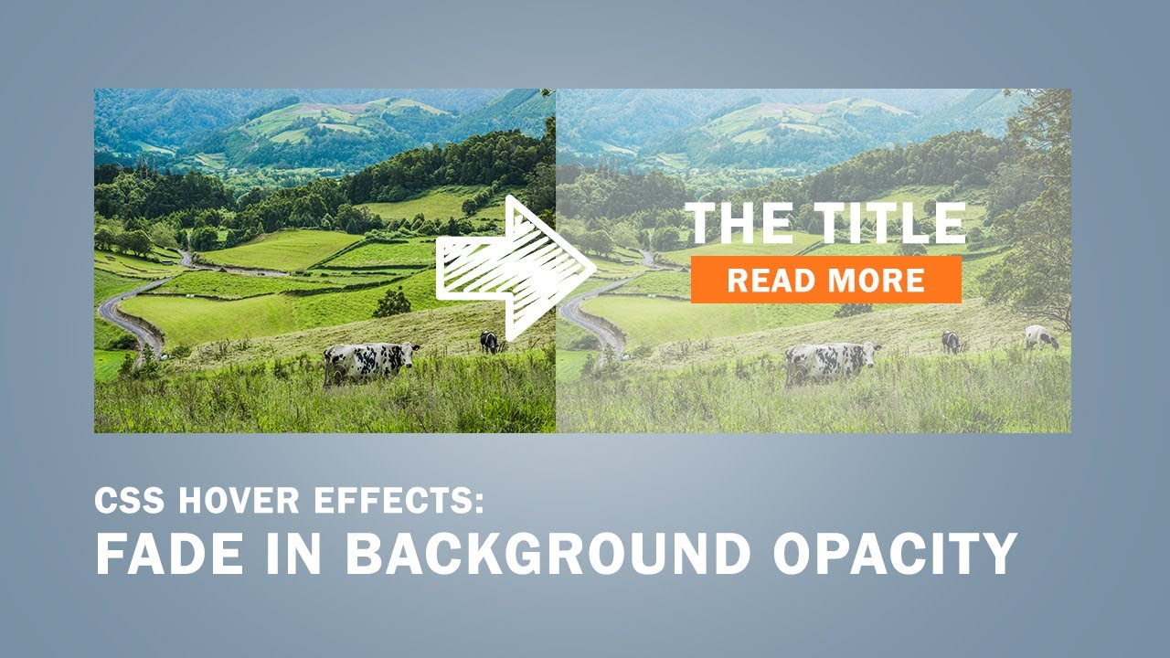 Background image opacity html - Css Hover Effects Fade In Background Opacity Transparent