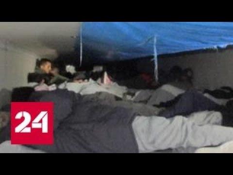В Техасе пограничники спасли 60 мигрантов из рефрижератора с брокколи