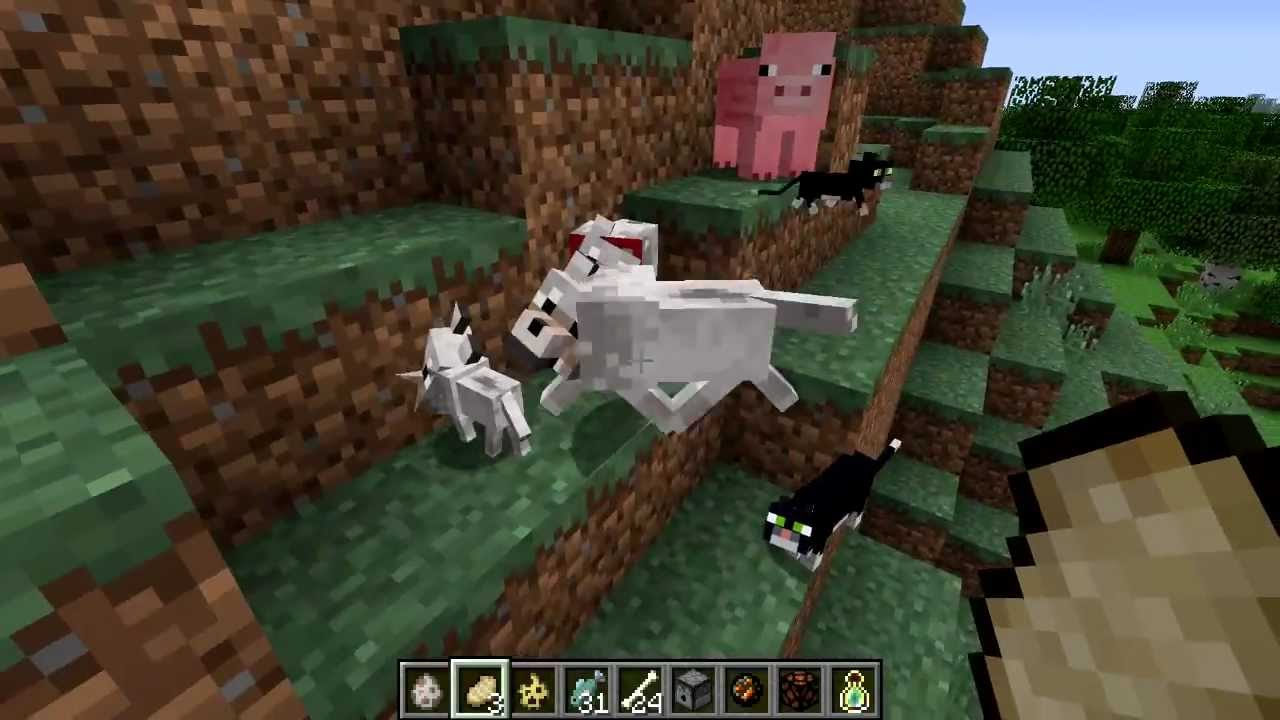 how to make a ocelot your pet in minecraft